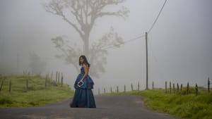 A woman (Clara) in a dark purple, long dress stands in the middle of the road, an ominous tree in the fog behind her.