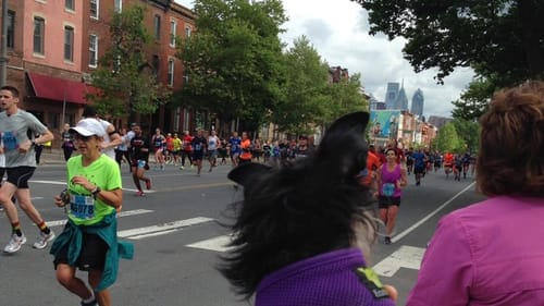 On the sidelines of the Broad Street Run in 2017. (Photo by Alaina Johns.)