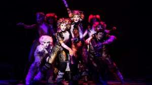They're not going away anytime soon: the cast of the 2019 Broadway tour of 'Cats.' (Photo by Matthew Murray.)