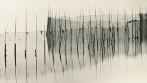 Contrasting light and sea with human efforts to tame it: Lisa Tyson Ennis's 2011 'Fishing Weir, Study XX.' (Image courtesy of the artist.)