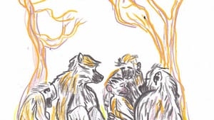 We could learn a thing or two from the gentle baboons of Forest Troop. (Illustration for BSR by Hannah Kaplan.)
