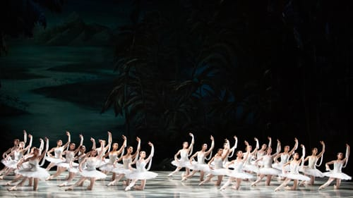 What we're here for, tutus and all: the artists of the PA Ballet in 'La Bayadère.' (Photo by Alexander Iziliaev.)