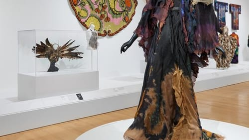Artist, viewer, and wearer: Marian Clayden's 1974 'Nocturnal Moth.' (Photo by Timothy Tiebout, courtesy Philadelphia Museum of Art, 2019.)