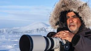 Polar bears on the horizon: photographer Amos Nachoum. (Image courtesy of GPJFF.)