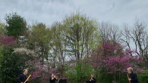 Streaming the fugue's golden age: Piffaro musicians Bob Wiemken, Priscilla Herreid, Joan Kimball, and Grant Herreid. (Photo by David Lowe.)