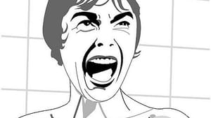 There's more to Janet Leigh's 'Psycho' character than that scream. (Image by Alvaro Tapia via Creative Commons/Flickr)