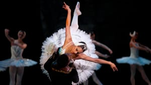 Daniel Sarabia and Patricia Delgado perform a Swan Lake pas de deux at Miami City Ballet. (Image courtesy of Wikimedia Commons.)
