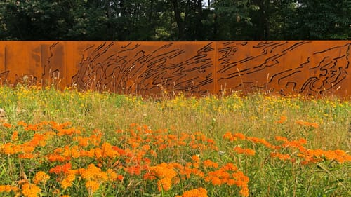 A bright wall of rust-colored metal, cut with topographical lines, sits beyond a field of bright orange flowers.