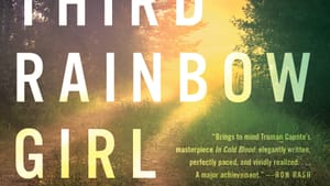 Loss, survival, and witnessing in an absorbing story from Appalachia. (Image courtesy of Hachette Books.)