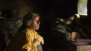 'Honeyland' documents the story of a bookkeeper in a remote Macedonian village. (Image courtesy of NEON.)